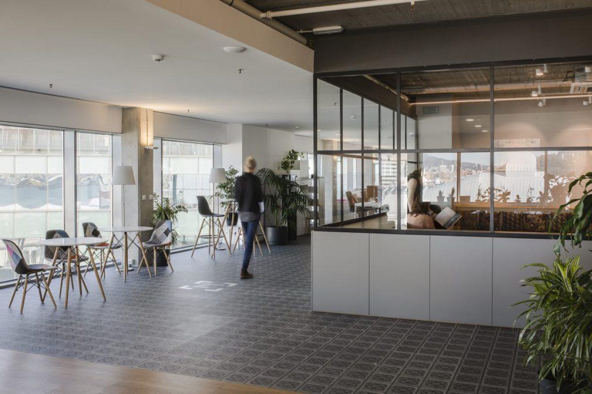 Reforma de oficinas OC (6)